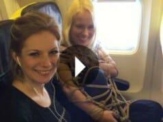 Abgehoben: Bondage im Flugzeug nach Mallorca