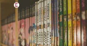 Bei Erotikfans begehrt: Hentai zum Lesen