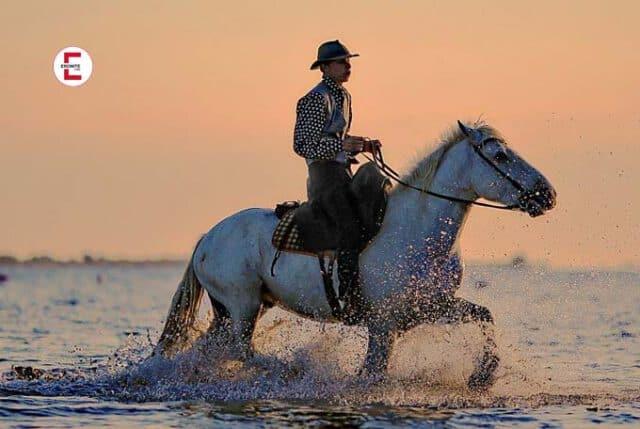 Was ist ein Spanischer Reiter?