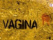 Unglaubliche 240 Synonyme für die Vagina